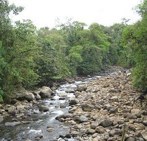 Costa Rica 2011 014 Water