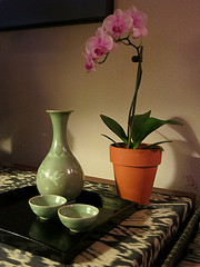 sake and orchid small