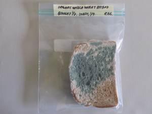 Bread01 5_5_2014