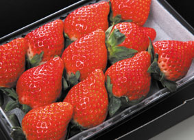 Strawberry 01 72dpi