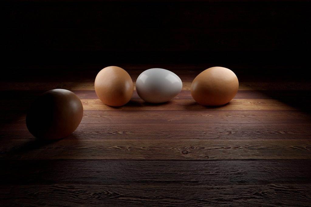 egg, gepelltes egg, 3d egg