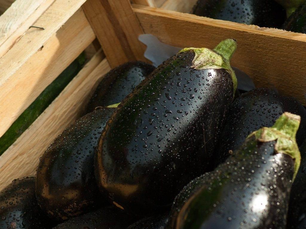 eggplant, market, vegetables
