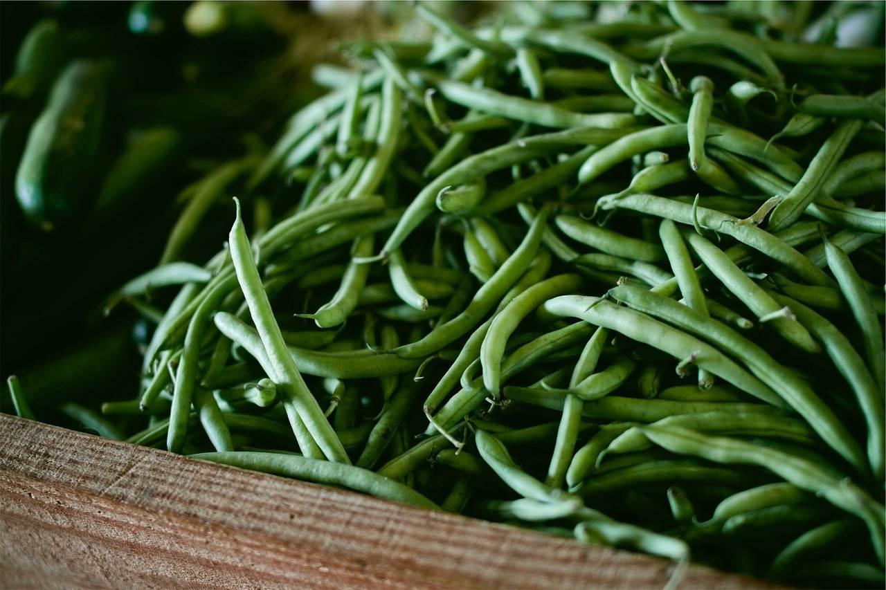 vegetables, string beans, green