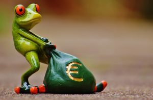 frog, money, euro-1234781.jpg